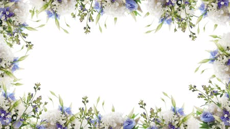 rovarok : Bouquet of blue irises, white flowers and butterfly. Footage with alpha channel.