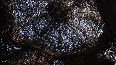 patrik : Chaska, MinnesotaUSA - Circa September 2014: An interior view of Patrick Doughertys Uff Da Palace at the Minnesota Landscape Arboretum in Chaska, Minnesota. Dostupné videozáznamy