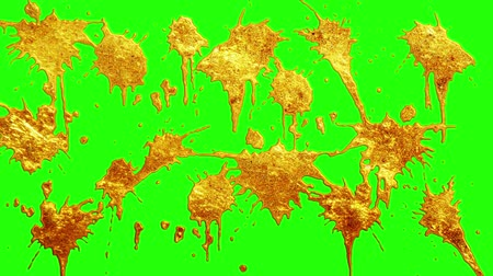 derretido : liquid gold paint splatter transition on chroma key green screen  new quality unique cartoon animation dynamic joyful cool video footage