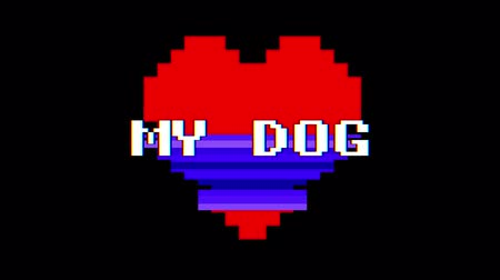 em forma de : pixel heart MY DOG word text glitch interference screen seamless loop animation background new dynamic retro vintage joyful colorful video footage
