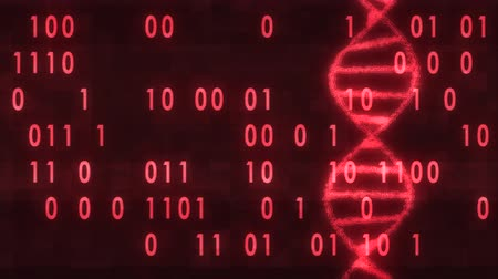 gen : DNA spiral molecule rotating on digital interference noise binar code glitched screen animation background new quality beautiful natural health cool nice stock video footage