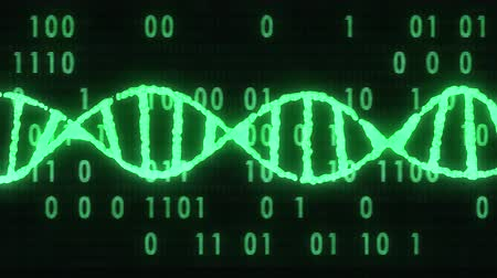 evolução : DNA spiral molecule rotating on digital interference noise binar code glitched screen animation background new quality beautiful natural health cool nice stock video footage