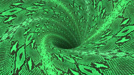 воронка : snakeskin wormhole funnel tunnel flight seamless loop animation background new quality vintage style cool nice beautiful 4k stock video footage