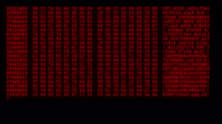 ciberespaço : encrypted fast long scrolling programming security hacking code data flow stream on red display new quality numbers letters coding techno joyful video 4k stock footage