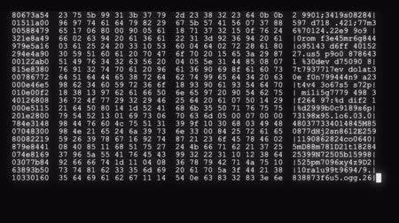 césar : encrypted fast long scrolling programming security hacking code data flow stream on black white display new quality numbers letters coding techno joyful video 4k stock footage