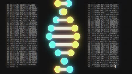 evolução : DNA spiral shape molecule decoding on lcd screen seamless loop animation background new quality beautiful natural health cool nice stock 4k video footage