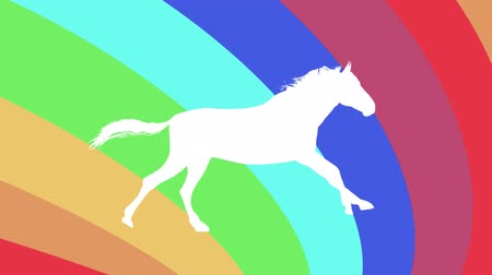 cavalos : white horse running silhouette on rainbow background new quality unique animation dynamic joyful 4k video stock footage