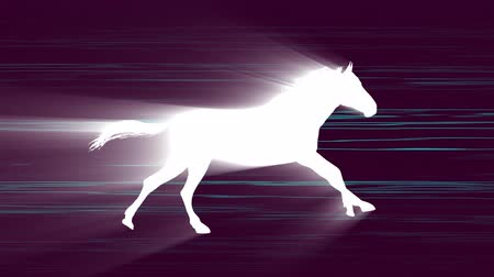 white light horse running silhouette on neon speed lines background new quality unique animation dynamic joyful 4k video stock footage Dostupné videozáznamy