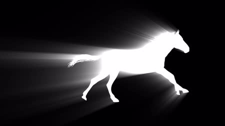 executar : white light horse running silhouette seamless loop new quality unique animation dynamic joyful 4k video stock footage Stock Footage