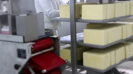 queijo cremoso : Packing Cheese in a Dairy Factory. The process of making cheese in a factory. Cutting and packing cheese in a dairy factory. 30 fps