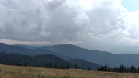 Spruce mountains and sky Environment in sunny day ature in the Carpathians Green color landscape nature