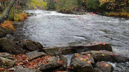 venkovský : Huge boulders and colorful fall forest on a riverside of Oxtongue river, Muskoka, Canada