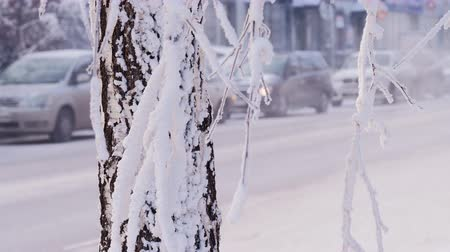 snows : car traffic in city at winter day Stock Footage