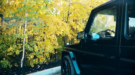the car in the Parking lot of the forest in autumn at sunset.