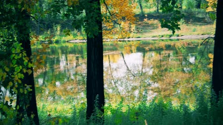 on the lake in the Park in autumn.