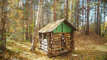falling leaves in the autumn forest, a small house.