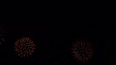 眩しい : Beautiful, magnificent, red, green and gold color of the dazzling fireworks. 4K 動画素材