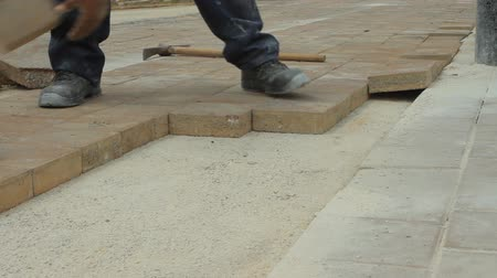 ajoelhado : Worker laying brick tiles on the road Vídeos