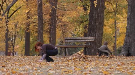 miłość : Family gathering maple leaves in an autumn park Wideo