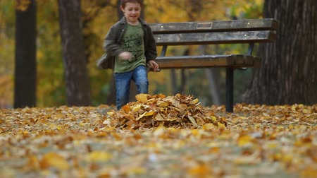 autumn : Seven year old boy throws autumn leaves and running