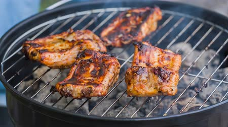 ribs : Barbecue Ribs on the grill. High quality video converted from 14 bit raw  Stock Footage