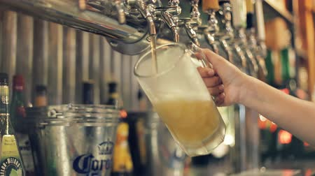 bira fabrikası : Pouring Perfect Draft Beer. A beer tap is a valve, specifically a tap, for controlling the release of beer. Stok Video
