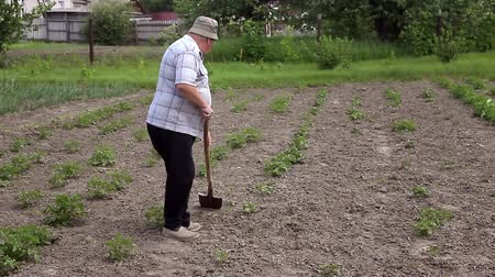 bahçıvan : Farmer working in the garden with the help of a shovel. Preparing for the cultivation of vegetables.