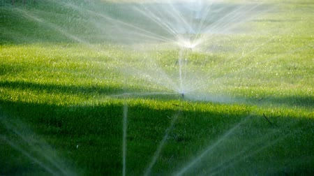 fényesen : Summer landscape. Automatic watering system for plants and lawn. Water sprinkler showering grass in park.