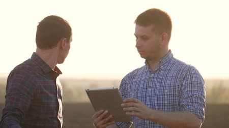 reporting : Farmers work in the field of wheat, communicate, look at the tablet. Two farmers talk in the field, use a tablet.