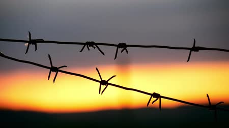hapis : Barbed wire fence with Twilight sky to feel Silent and lonely and want freedom. Barbed wire steel wall against the immigration in Europe.