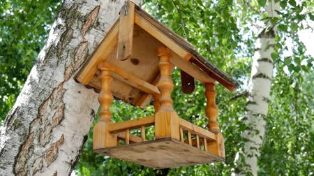 feeder : Bird feeders. tree house for the birds, cheerful apartment.