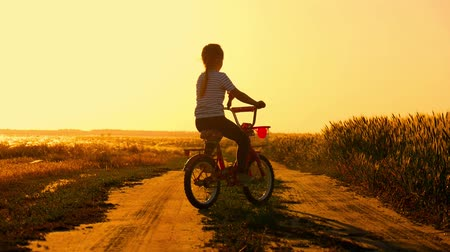 ciclismo : Biker-girl at the sunset on the meadow. Child enjoying freedom on bike on wheat field at sunset. Girl on a bike in the countryside in sunset time. Stock Footage