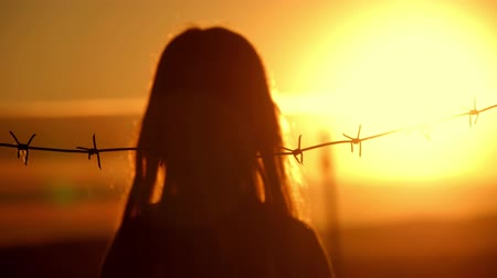 göçmen : Small girl is at sunset behind barbed wire. The concept of freedom and Immigration. Stok Video