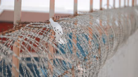 farpa : Security fence with a barbed wire. Fence with a barbed wire. Stock Footage