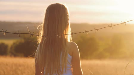 hapis : Small girl is at sunset behind barbed wire. The concept of freedom and Immigration. Stok Video