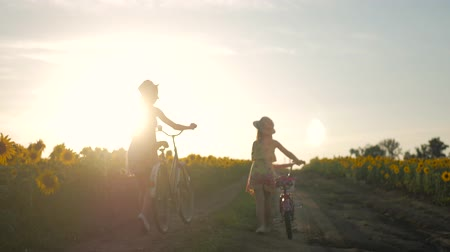 подсолнухи : Family on bicycles in nature. Mom and daughter on bicycles on a field of sunflowers. Mother and daughter in hats are walking through sunflowers field. The concept of the family.