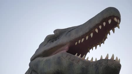 nagy : close up head of Tyrannosaurus