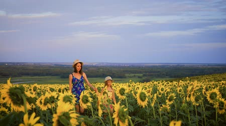 подсолнухи : Mother and daughter at the sunflower field. Mother and daughter in hats are walking through sunflowers field. The concept of the family.