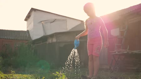 watering can : Little girl watering plants in a garden. Cute little girl gardener with watering can. Stock Footage