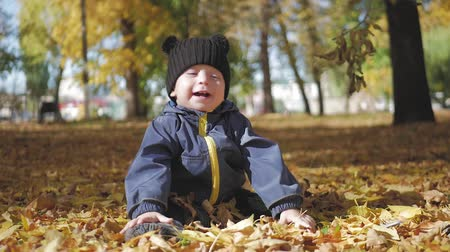 folhas : Happy little child, baby boy laughing and playing in the autumn in the park walk outdoors. Stock Footage