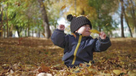 golden falls : Happy little child, baby boy laughing and playing in the autumn in the park walk outdoors. Stock Footage