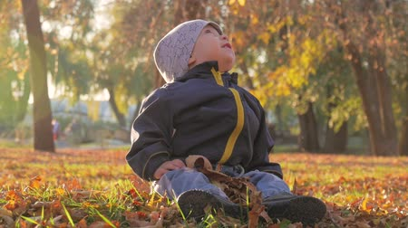 feliz : Little baby boy sitting on grass and fallen leaves in park on bright and sunny early autumn day looking at yellow leaf in hand and smiling. Happy baby boy throws autumn leaves and laughs outdoors.