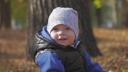 乳幼児 : Happy little child, baby boy laughing and playing in the autumn in the park walk outdoors. 動画素材