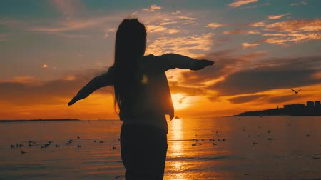 悪 : Silhouette of happy child girl stands on background of sunset sky and sea and throws his hands as if flies. Summer vacation, adoption and people concept. Happy little girl having fun over sunset. 動画素材