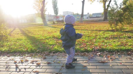 október : Happy little child, baby boy laughing and playing in the autumn in the park walk outdoors. Stock mozgókép