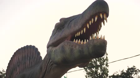 jura : close up head of Tyrannosaurus