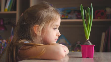 горшках : Pretty young girl looking at potted plant with thoughtful expression. People, gardening, flower planting concept. Стоковые видеозаписи