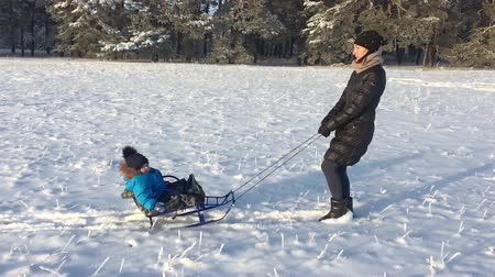 geada : Little boy enjoying a sleigh ride. Mother sled his cute child. Family winter activities outdoors. Happy family having fun outdoor. Stock Footage