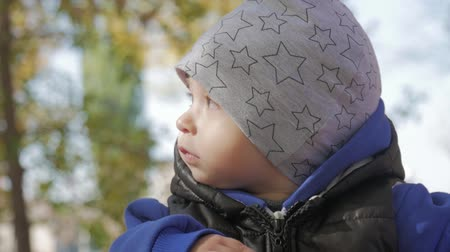 Happy little child, baby boy laughing and playing in the autumn in the park walk outdoors. Стоковые видеозаписи