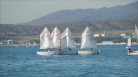 Sailboats participate in sailing regatta. Sailing boats on the sea. Стоковые видеозаписи